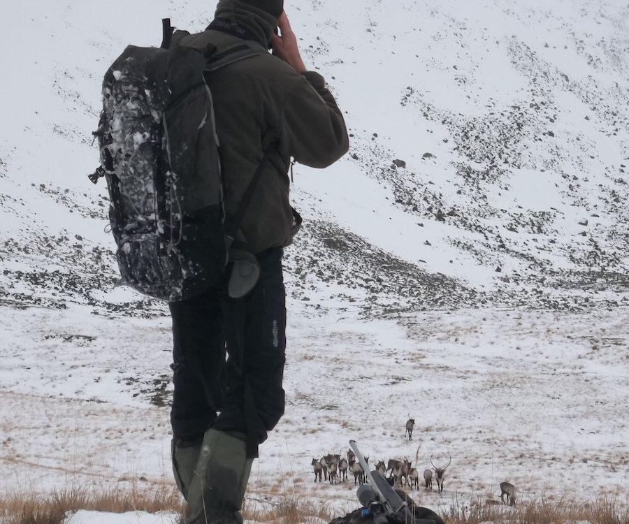 British Columbia Wilderness Hunt